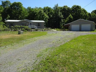 Newaygo County Single Family Home For Sale: 8532 N Warner