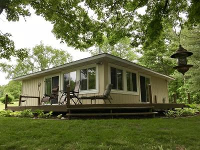 Mecosta County Single Family Home For Sale: 23315 Holiday Drive