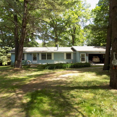 Evart Single Family Home For Sale: 8612 Montery Drive