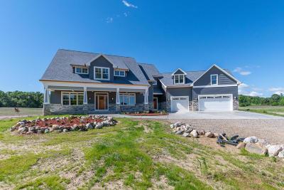Kalamazoo County Single Family Home For Sale: 10359 W Q Avenue