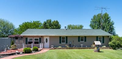 Van Buren County Single Family Home For Sale: 04900 Baker Road