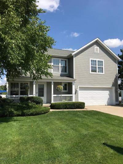 Hudsonville Single Family Home For Sale: 3095 Sun Chase Avenue
