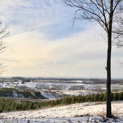 Manistee County Residential Lots & Land For Sale: Lot V Kerry Road