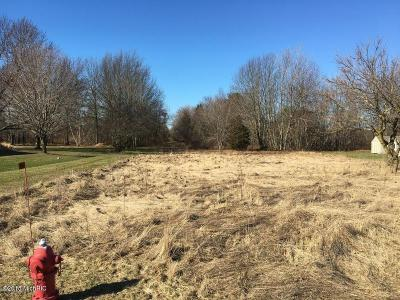 Bridgman Residential Lots & Land For Sale: Date Road