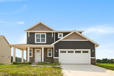 Allendale Single Family Home For Sale: 11673 Everett Avenue