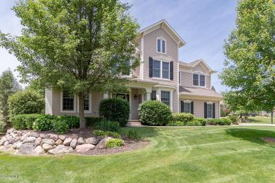 Kalamazoo County Single Family Home For Sale: 6320 Cullys Trail