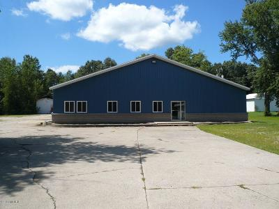 Niles MI Commercial For Sale: $600,000