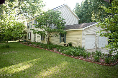 Newaygo County Single Family Home For Sale: 4540 N Evergreen Drive