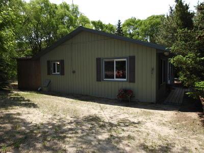 Mears Single Family Home For Sale: 2870 N Sahara Trail