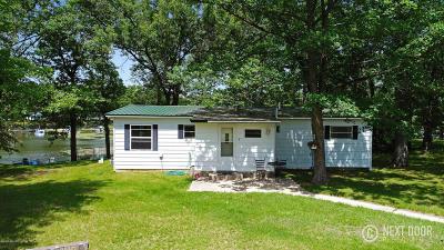 Newaygo County Single Family Home For Sale: 8474 Vista Drive