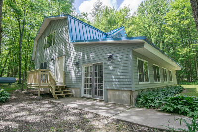 Evart Single Family Home For Sale: 8432 S 135th Avenue