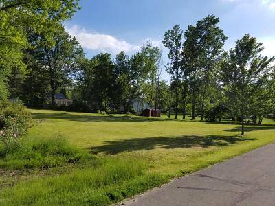 Ionia County Residential Lots & Land For Sale: Lot 124&125 Rochester Street