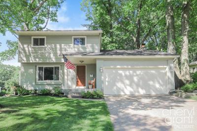 Comstock Park Single Family Home For Sale: 4813 Stony Creek Avenue NW