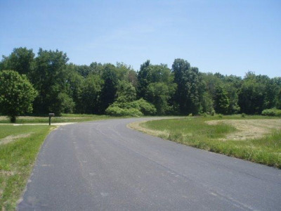 Otsego Residential Lots & Land For Sale: Unit 13 Cygnet Drive #13