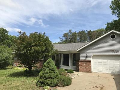Allegan Single Family Home For Sale: 3649 Allegan Dam Road