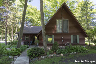 Newaygo County Single Family Home For Sale: 6081-6073 E Dave Street