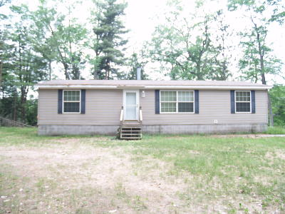 Newaygo County Single Family Home For Sale: 3797 W Wildwood Ave