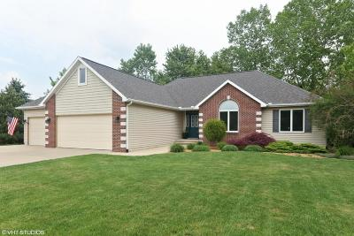 Benton Harbor Single Family Home For Sale: 1641 Carolyn Drive