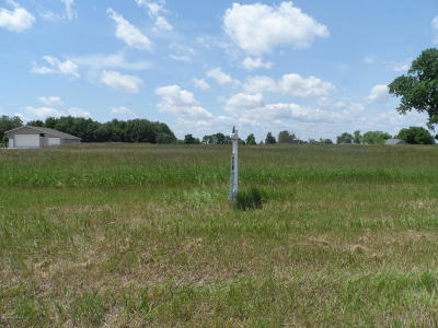 Ionia County Residential Lots & Land For Sale: 7102 Friend Road