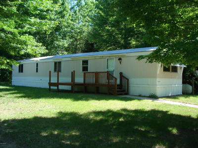 Mecosta County Single Family Home For Sale: 14108 100th Avenue