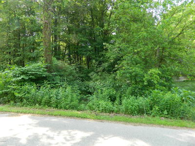 Grand Haven, Spring Lake, Ferrysburg Residential Lots & Land For Sale: Ferry Street
