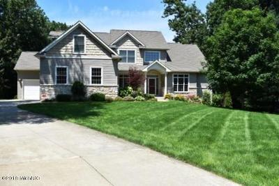 Kalamazoo County Single Family Home For Sale: 8742 Pine Island Court N