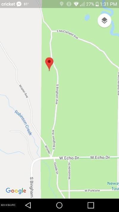 Newaygo County Residential Lots & Land For Sale: 387 S Bingham Avenue