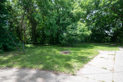 Grand Rapids Residential Lots & Land For Sale: 2221 May Avenue SW