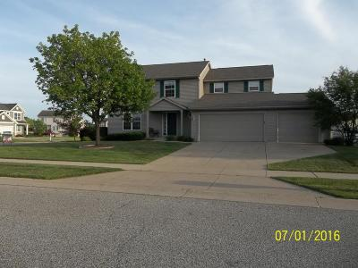 Wyoming Single Family Home For Sale: 2626 Picadilly Drive SW