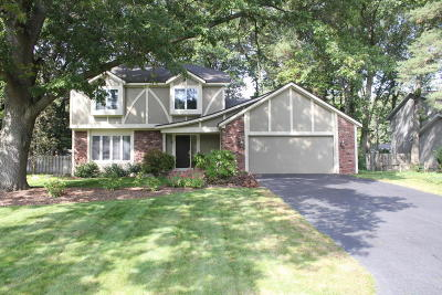 Holland, West Olive Single Family Home For Sale: 741 Old Town Road