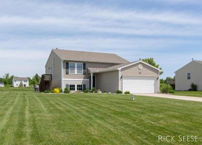 Single Family Home For Sale: 14640 Ivorystone Drive NE