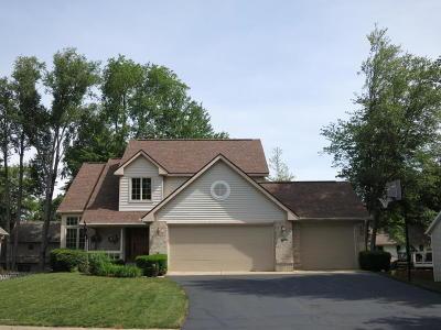Kalamazoo County Single Family Home For Sale: 10373 Shuman Street