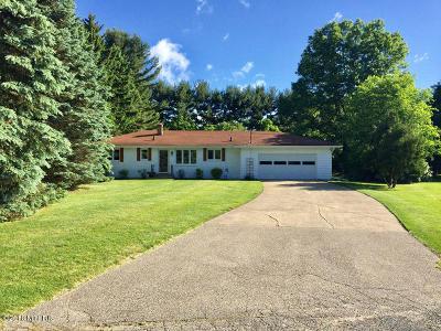 Kalamazoo County Single Family Home For Sale: 6587 Twilight Avenue