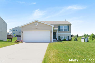 Wyoming Single Family Home For Sale: 3410 Copper River Avenue SW