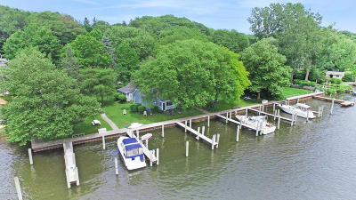 Saugatuck, Douglas Single Family Home For Sale: 645 Lake Street