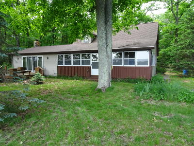 Newaygo County Single Family Home For Sale: 3490 Croton Drive