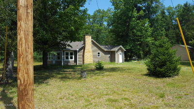 Manistee County Single Family Home For Sale: 95 S Tippy Dam Rd Road
