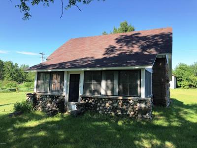 Osceola County Single Family Home For Sale: 423 S 30th Avenue