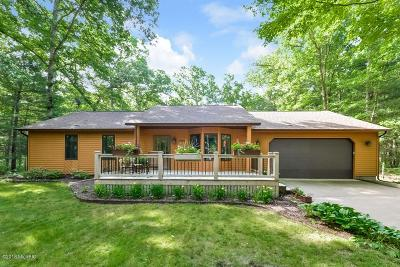 Allegan County Single Family Home For Sale: 2683 Old Allegan Road