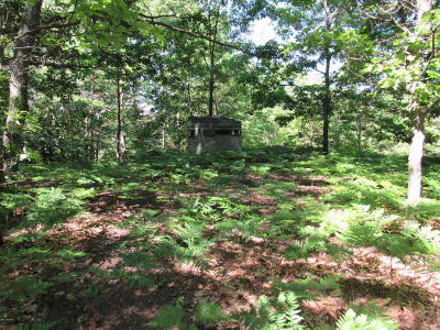 Oceana County Residential Lots & Land For Sale: 0000 100th Ave Road