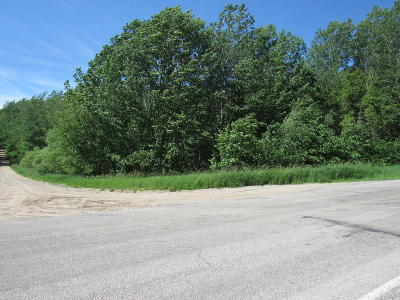 Oceana County Residential Lots & Land For Sale: 0000 E Arthur Road