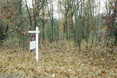 Allegan County Residential Lots & Land For Sale: Arrowhead Trail