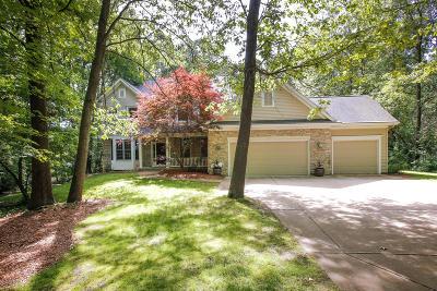 Kalamazoo County Single Family Home For Sale: 6826 Walden Park Lane