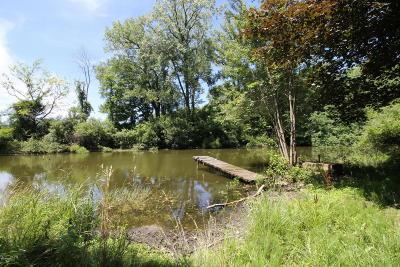 Bridgman Residential Lots & Land For Sale: Holden Road