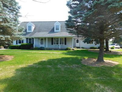 Schoolcraft Single Family Home For Sale: 7953 W U Avenue