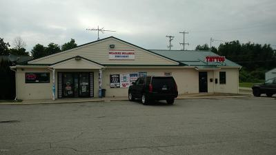 Big Rapids Commercial For Sale: 1709 S State Street