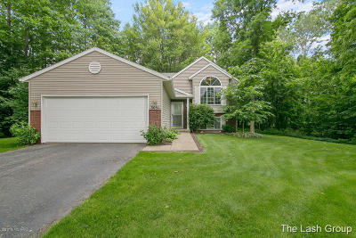 Kent County Single Family Home For Sale: 3051 Core Court