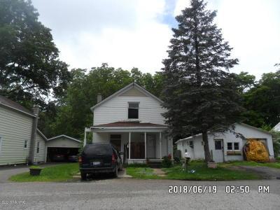 Allegan Single Family Home For Sale: 118 Allett Street