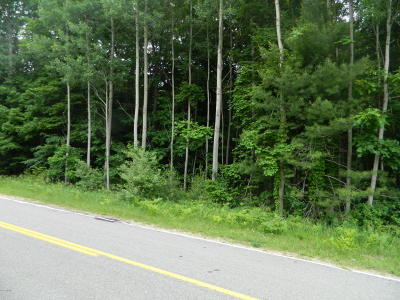 New Era MI Residential Lots & Land For Sale: $40,000