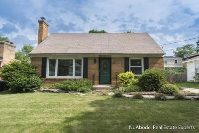 Grand Rapids Single Family Home For Sale: 1447 Hazen Street SE